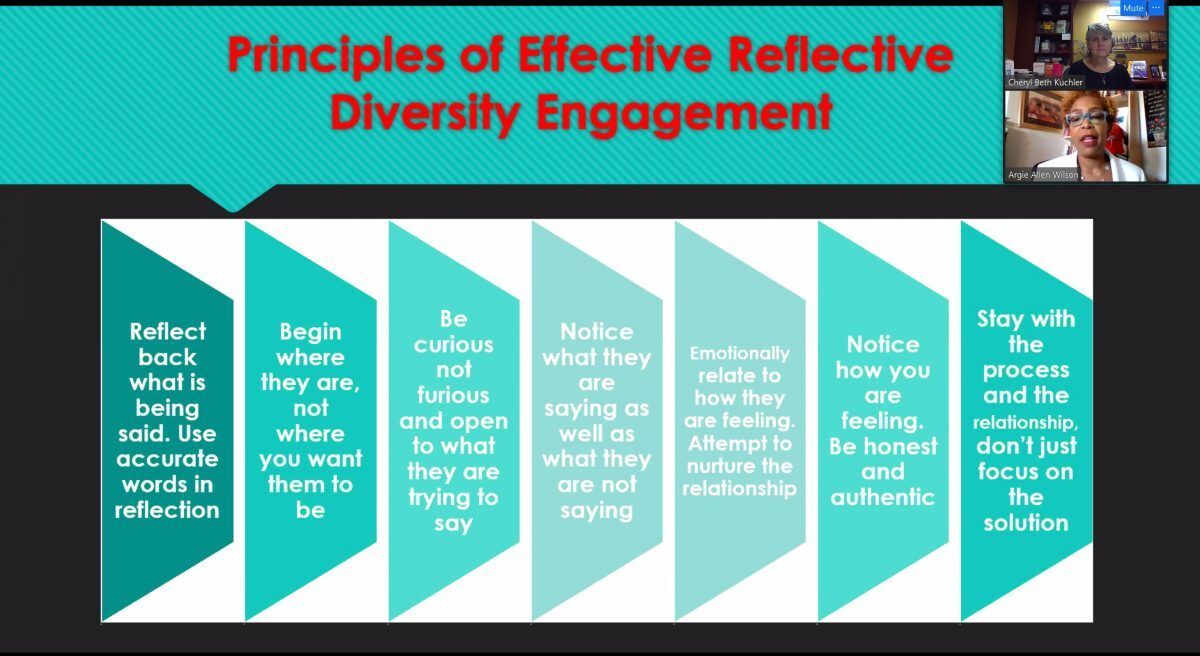 Principles of Effective Reflective Diversity Engagement